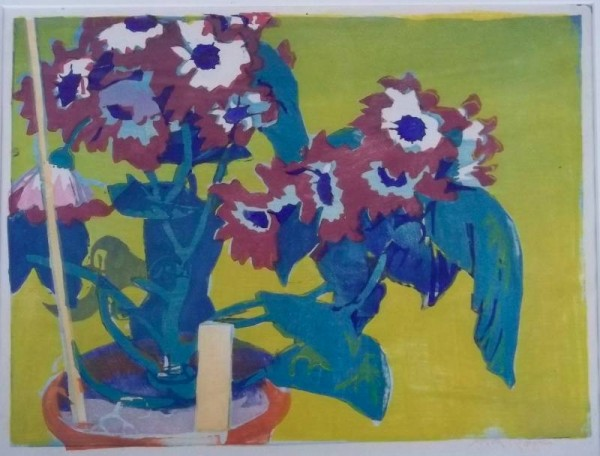 Mabel Royds 'Cineraria' woodcut