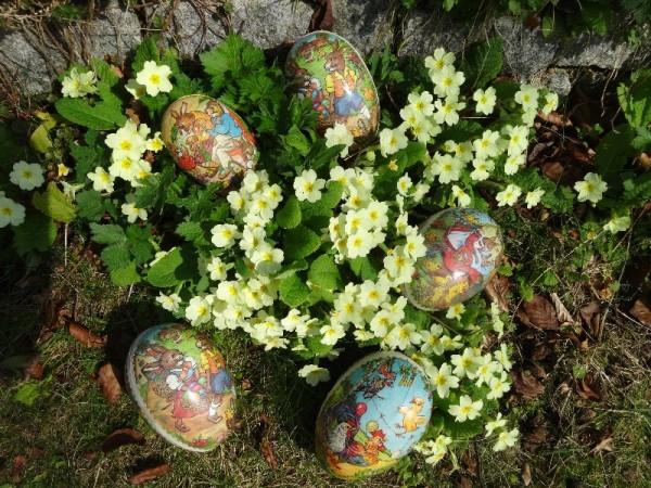 Easter eggs amongst the primroses