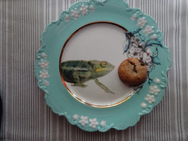 Peanut butter and chocolate chip biscuit on Lou Rota's 'Nature Table ' plate (for Anthropologie)