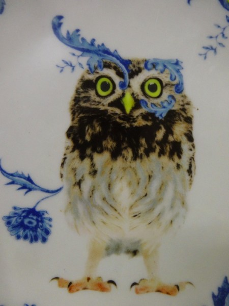 Detail of owl on an Anthropologie plate