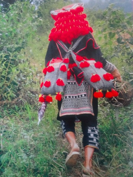 """Picture of Red Dao woman on the way to market and showing her headdress of multiple scarves and tassels. (Once again this is not my photo but is taken from the excellent """"Textiles: A World Tour"""" by Catherine Legrand (T & H, 2008)"""